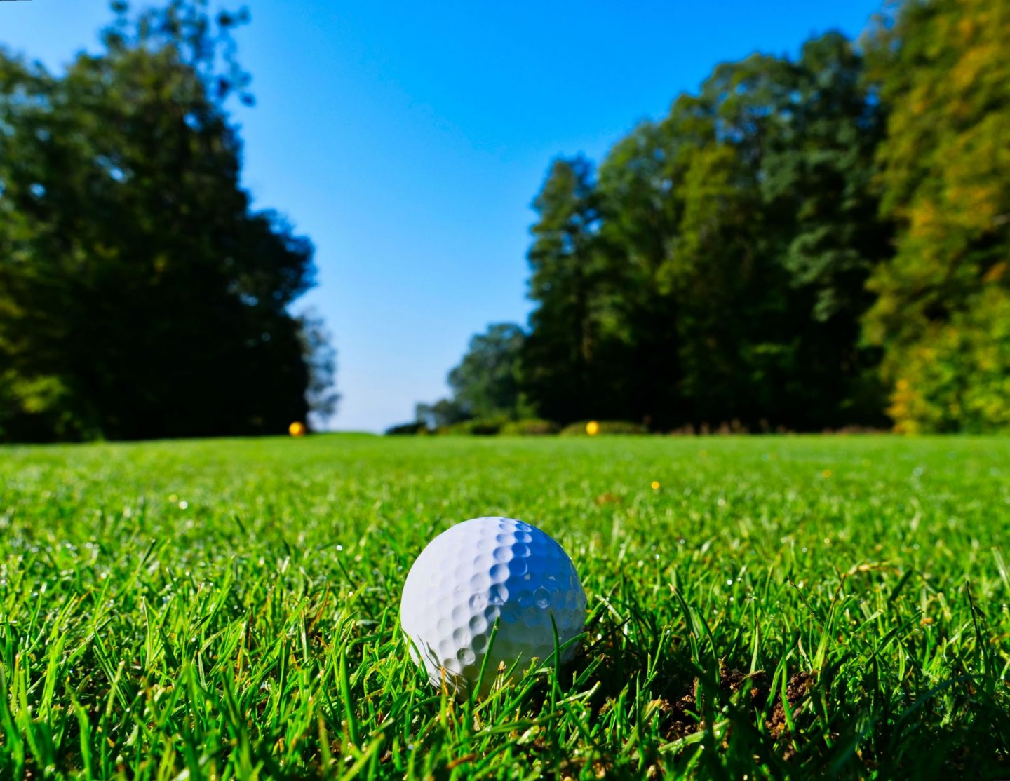GOLF 101: PLAYING TO REACH A BETTER YOU