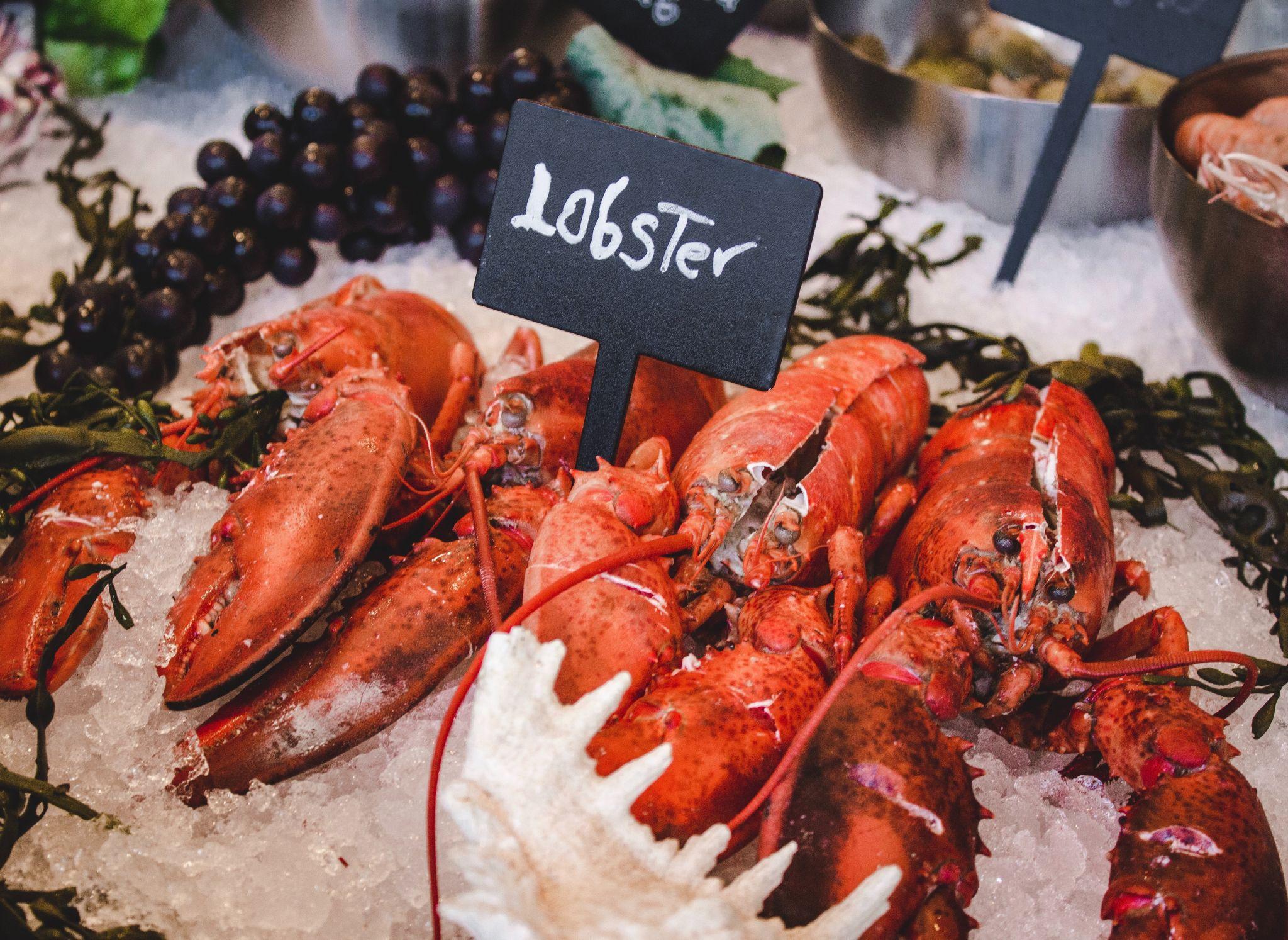 Sorrento Lobster