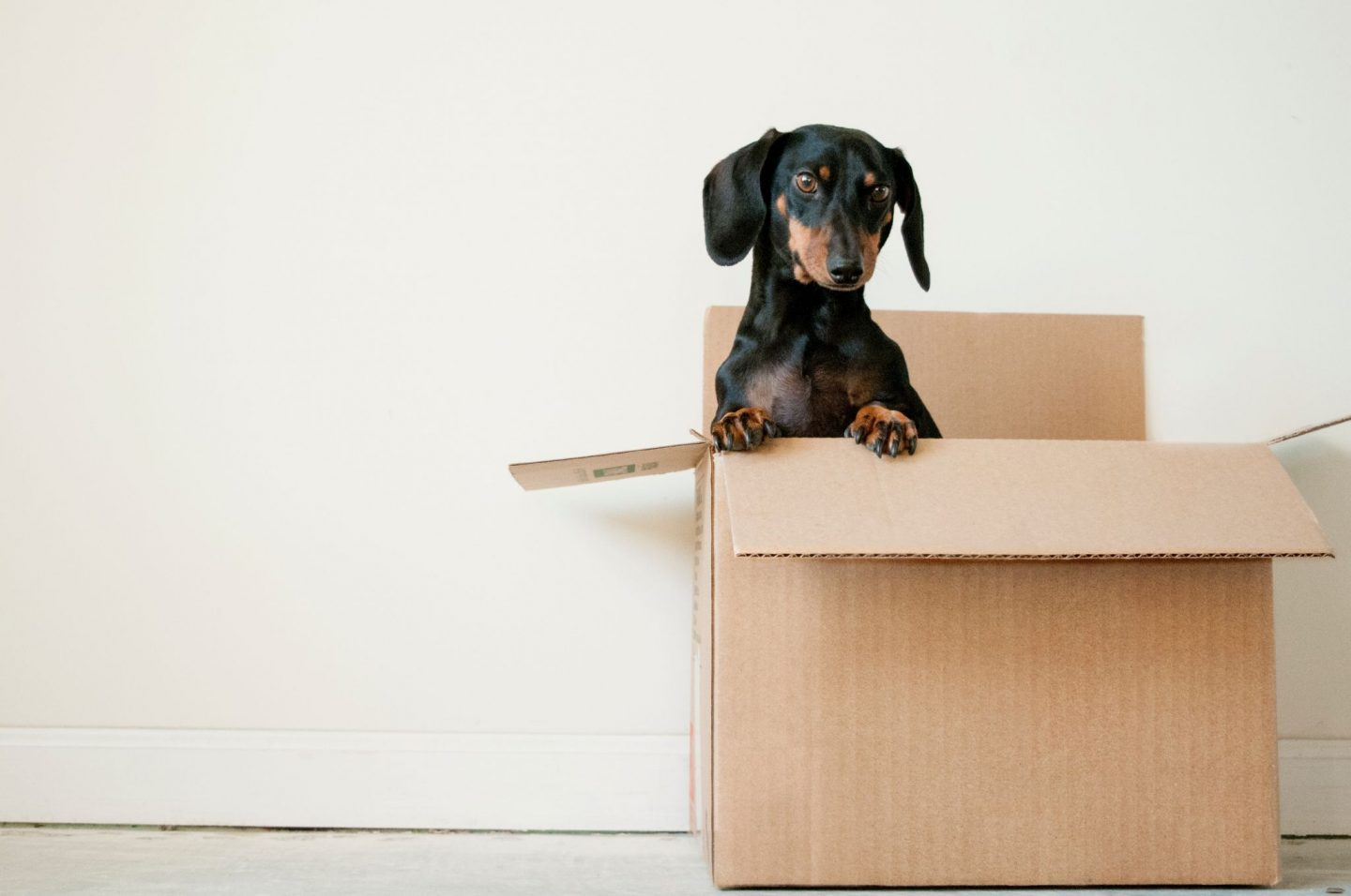 MOVING HOUSES: QUICK TIPS FOR MUMS