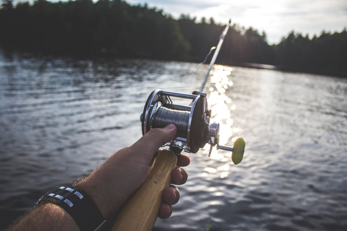 A BRIEF GUIDE TO BASS FISHING