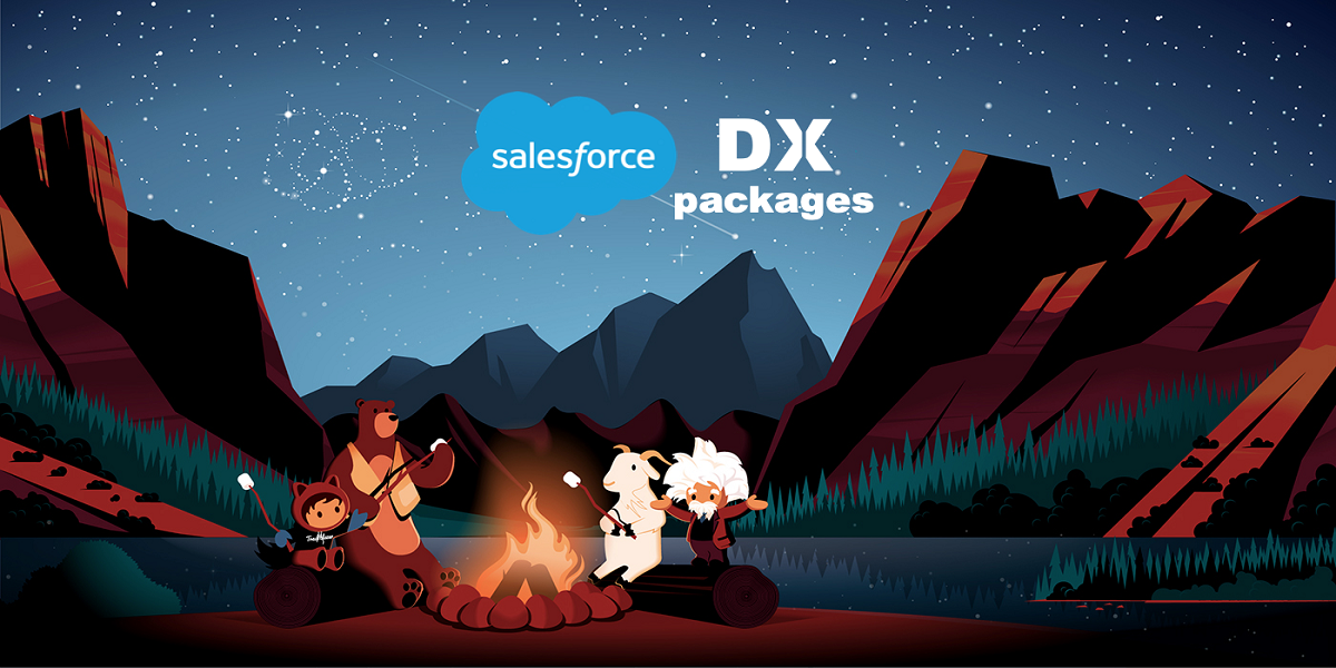 7 SIGNS A RELIABLE AND PROFESSIONAL SALESFORCE DEVELOPER MAY HAVE