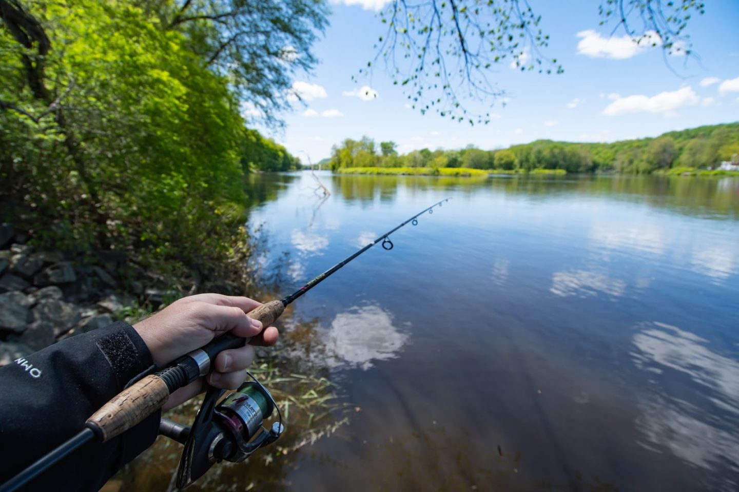 Fishing 101: How to Catch Your First Fish